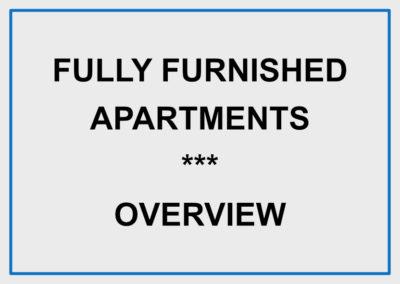 Standard Apartment – 2 room – furnished / Rotkreuz